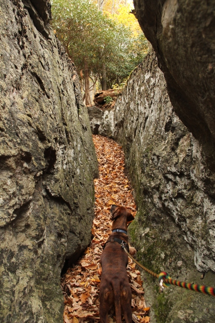 Turns out the trail was called Split Rock because there is literally a rock, that is split, that the trail goes through.