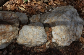 A lot of the trail was punctuated with brilliant white rocks that looked like quartz.